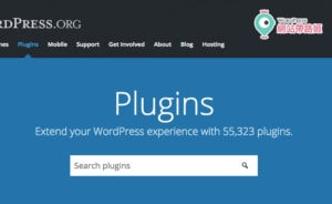 WordPress has more than 50,000 plugins in the depository