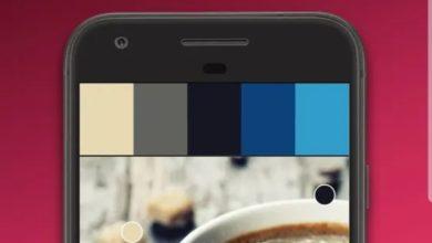 Photo of 不會繪圖軟體也行!三秒鐘照片轉向量檔和產生色彩建議的APP